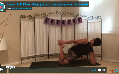 Protected: Level 1-2 King Pigeon with Jonah