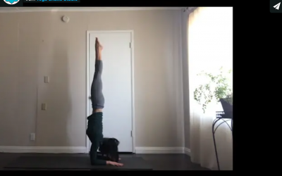 Protected: Level 2 Inversions Forearm Stand with Melissa