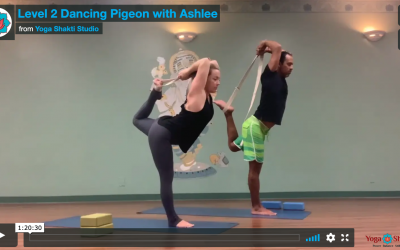 Protected: Level 2 Dancing Pigeon with Ashlee